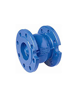 Axial type check valve – cast iron – flanged – ACS