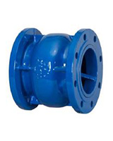 Flanged cast iron axial type check valve PN25