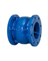 Flanged cast iron axial type check valve PN40