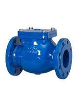 Swing check valve PN25 – metal/EPDM tightness – cast iron – flanged