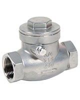 Swing check valve – stainless steel – female BSP