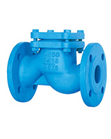 Vertical lift check valve – cast iron – flanged