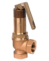 Canalized exhaust safety valve with discharge lever – bronze – male BSP