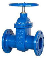 Flanged cast iron gate valve PN40 – long pattern F5