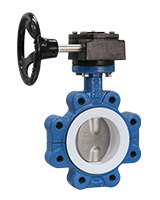 Lugged type butterfly valve – ductile iron body – stainless steel 316 disc – gearbox operator
