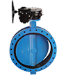 Teclarge – Butterfly valve with flanges