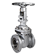 Casted gate valves